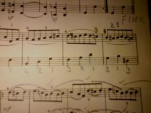 Herr Mueller's fingering notes on my piano page